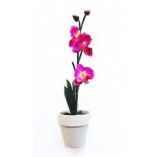 Артикул  F-1-002  Орхидея