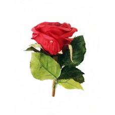 Артикул  F-1-008  Роза
